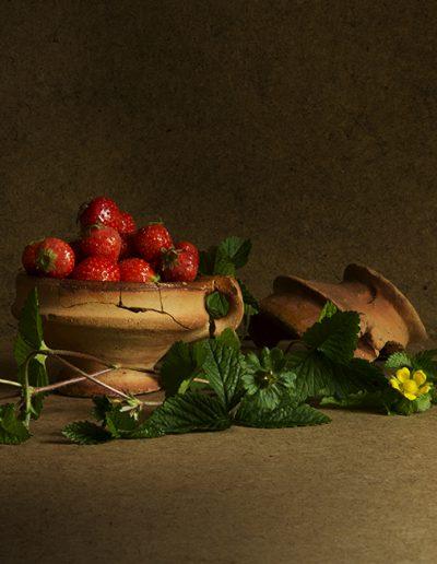 Aardbeienpotjes